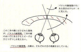 パーヌムの融像圏