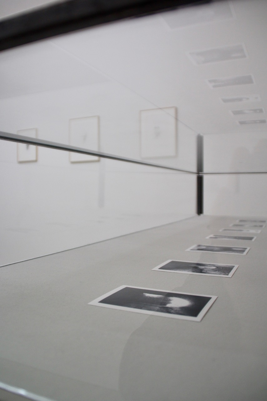 Contemporary Austrian Photography by Anja Ronacher 2021. Krinzinger Projekte Galerie Ausstellungen in Wien 2021.