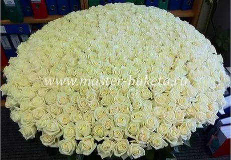 9-905 (501 роза)