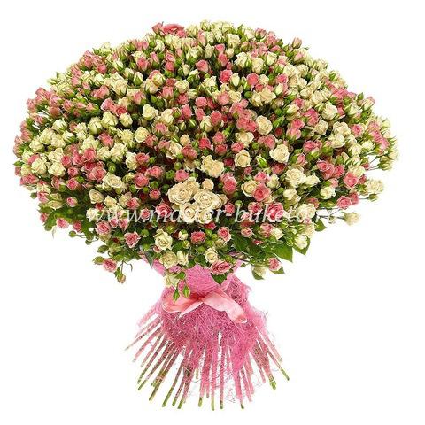 9-520 (51 кустовая роза)