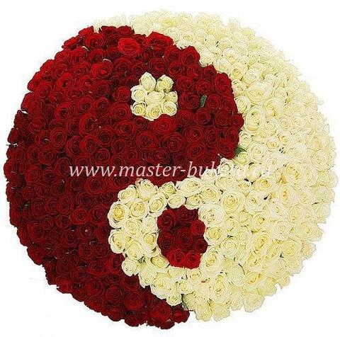 9-804 (251 роза)