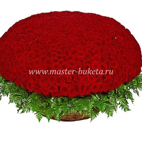 9-902 (501 роза)