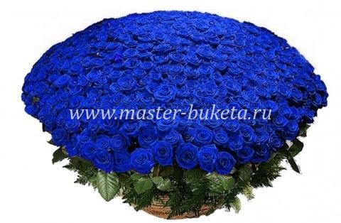 9-903 (501 роза)