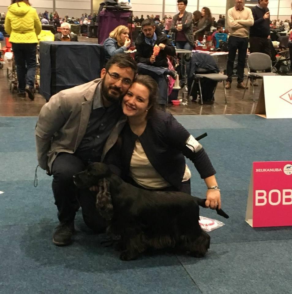 Aladin Dreaming Stars della socia Nunzia Racanelli - World Winner 2017 e BOB Cocker inglesi