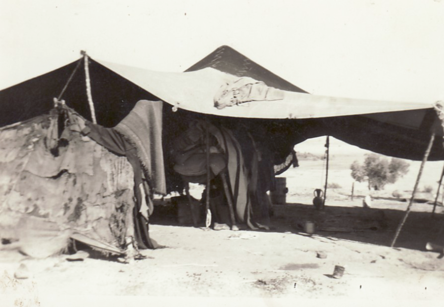 Tante de Nomades prés de Guelma, lors de la transhumance en 1963