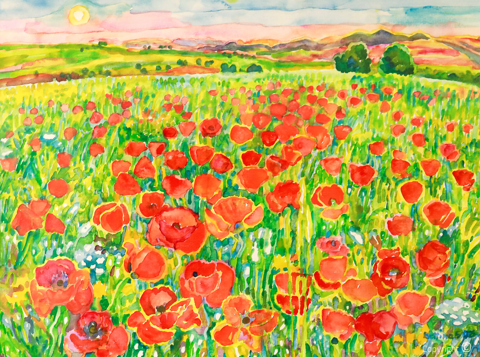 Poppy field near Guelma, 2005