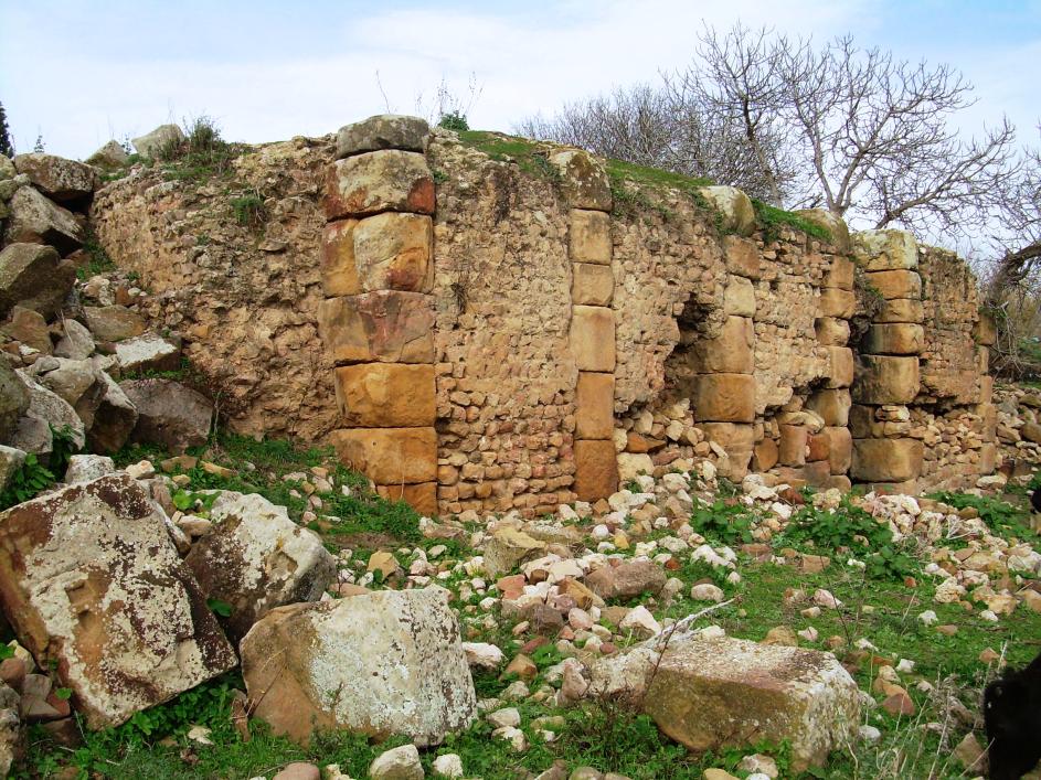 Les ruines romaines de Thabarbusis près de Guelma