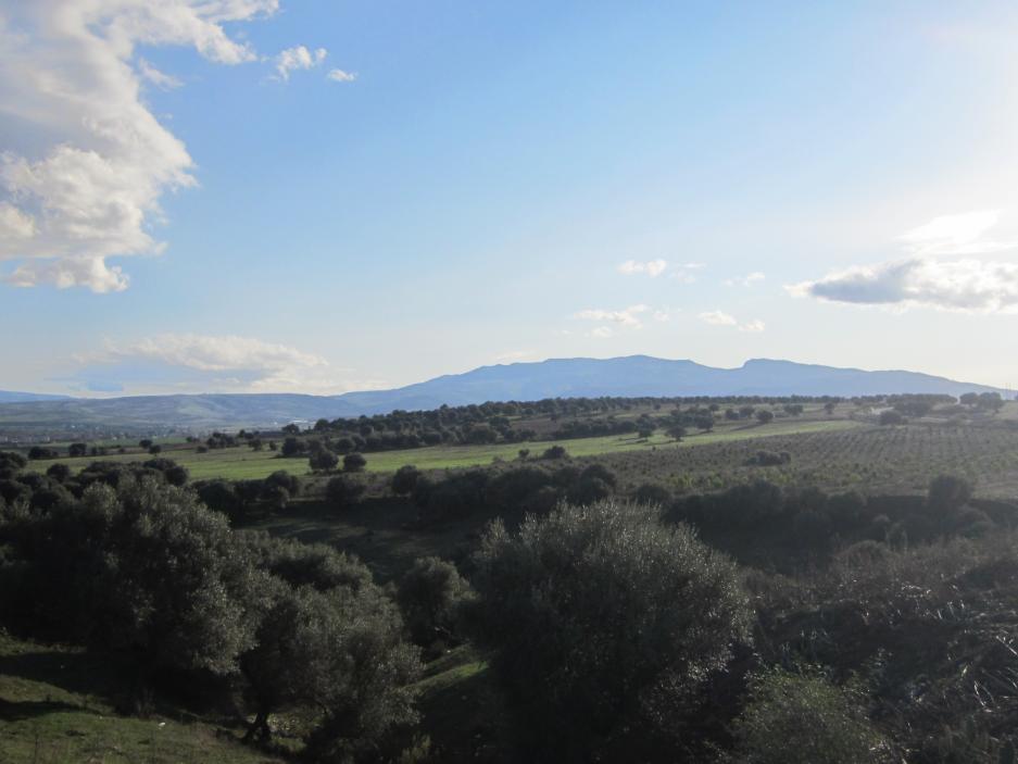 Panorama de la Mahouna, 2011