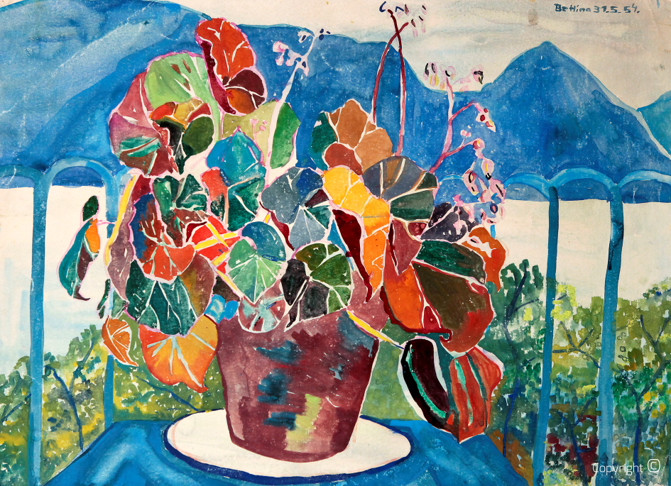 Flower arrangement over Lake Maggiore, 1954