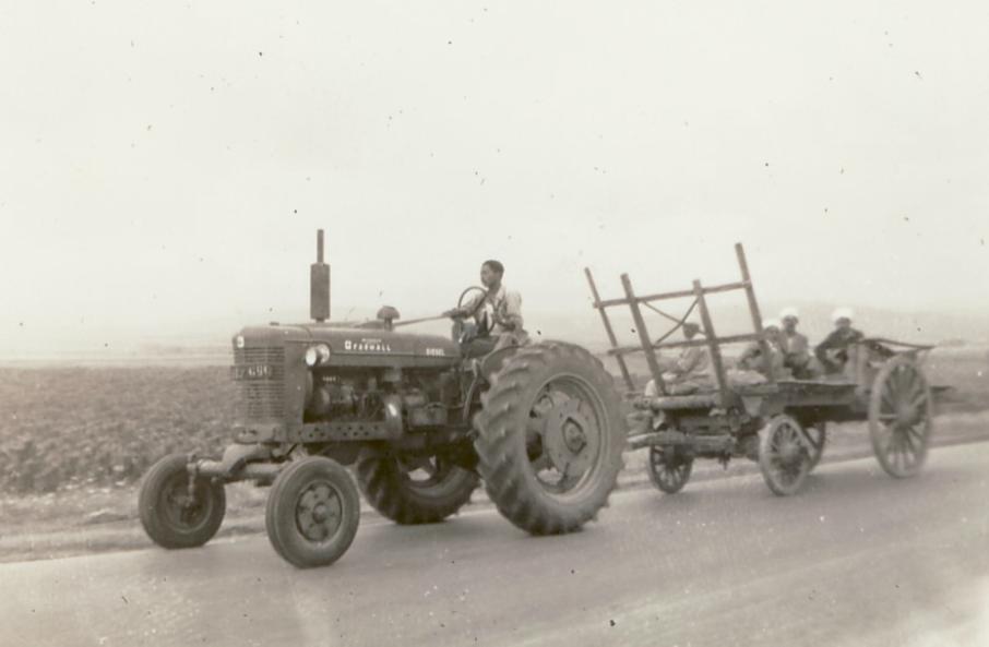 Tracteur à Guelma, vers 1963