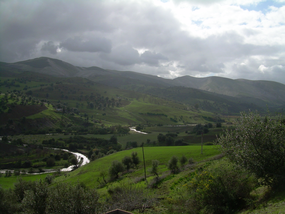Landscape at the Oued Melah near Guelma, 2006