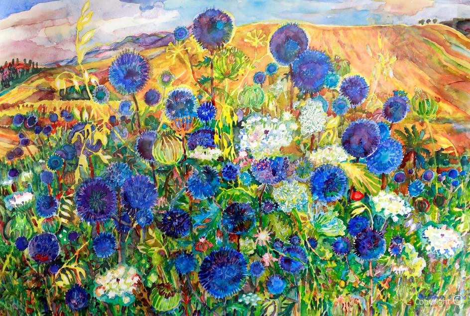 Chardons bleus sur champ d'été, 2006
