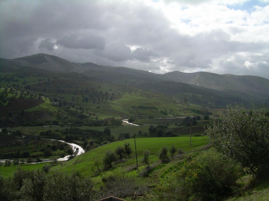 Landschaft am Oued Melah bei Guelma, 2006