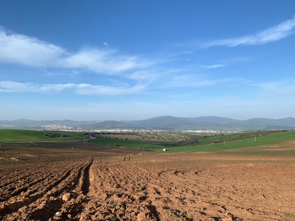 La vallée de Seybouse