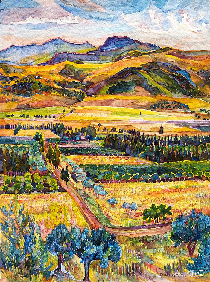 La vallée de Seybouse en été 1990