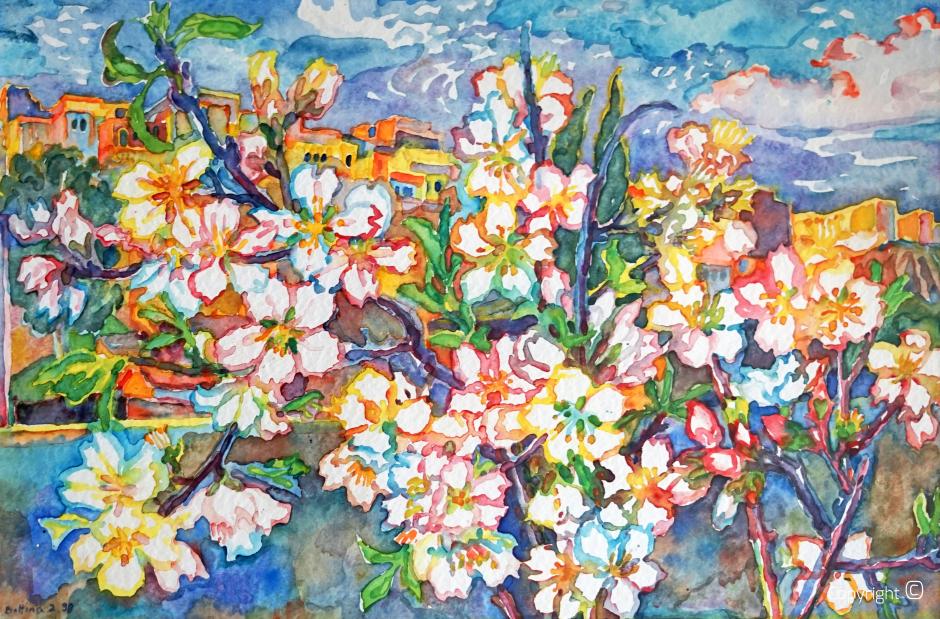Blumenportrait – Blick von Bettinas Dachterrasse in Guelma, 1998