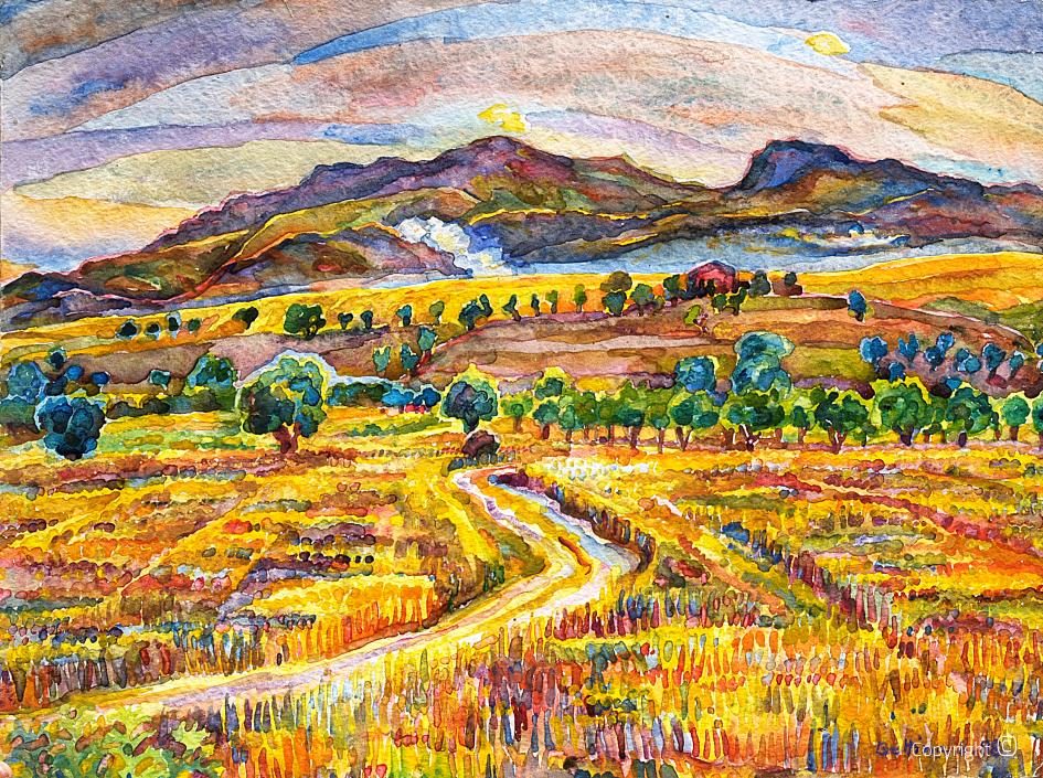 Felder im Sommer vor dem Mahouna, 1998