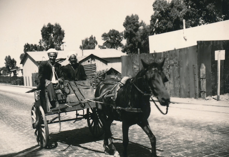 Donkey cart on the way to Guelma, circa 1963