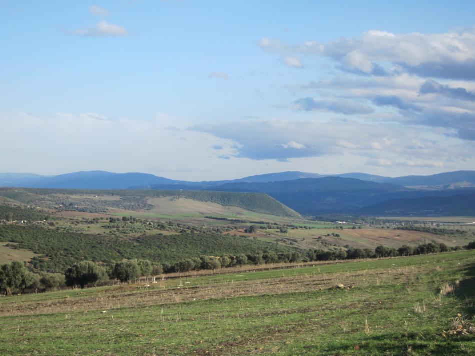 Djebel Zemzouma near Guelma, 2011
