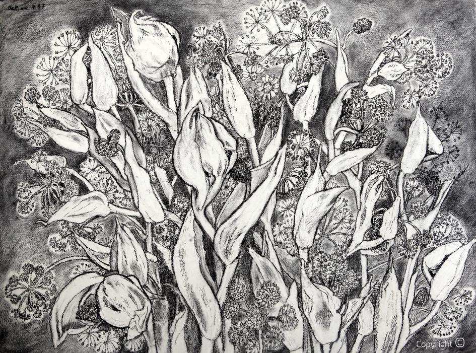 Blumenportrait,  1997