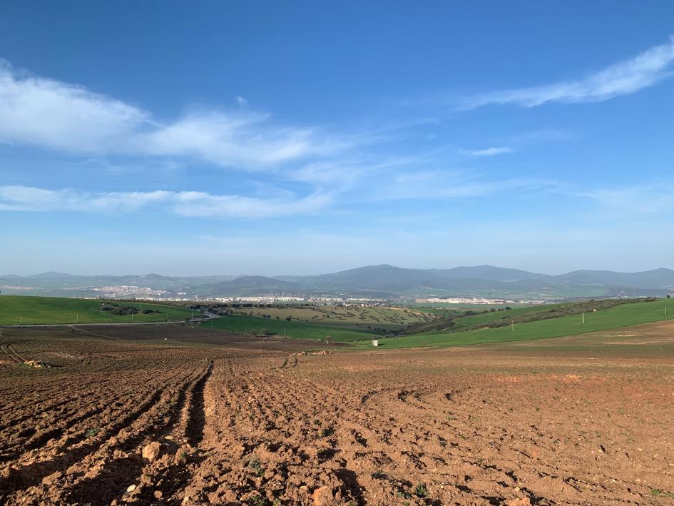 Das Tal der Seybouse