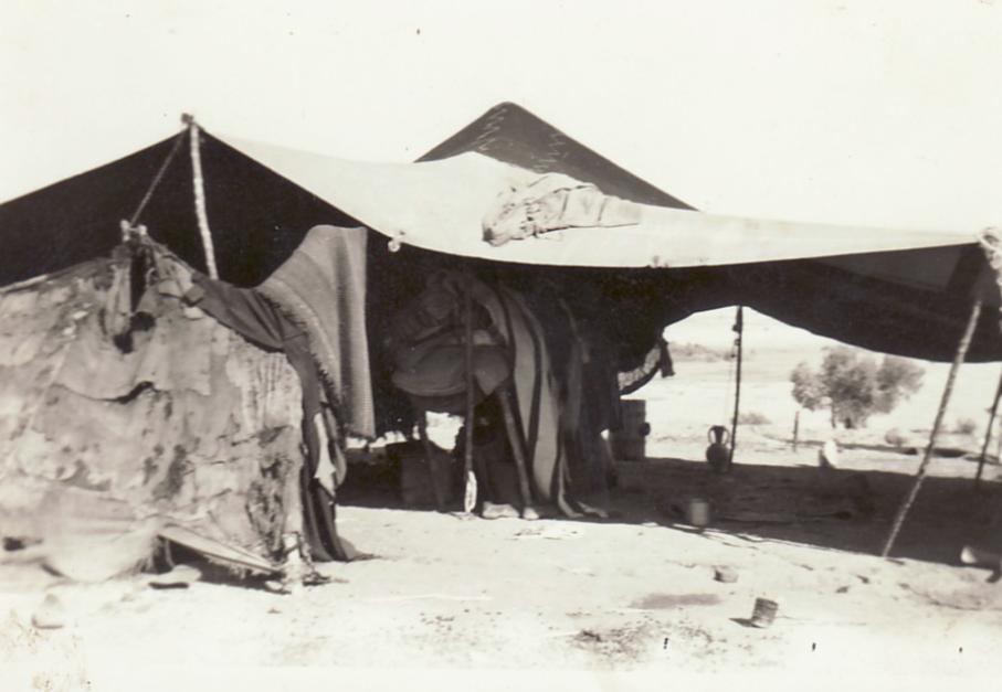 Nomad tent near Guelma, ca.1963