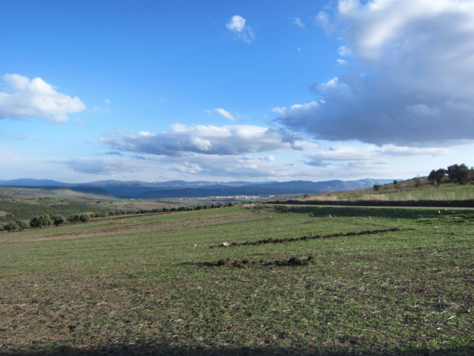 Impression from the Seybouse valley near Guelma