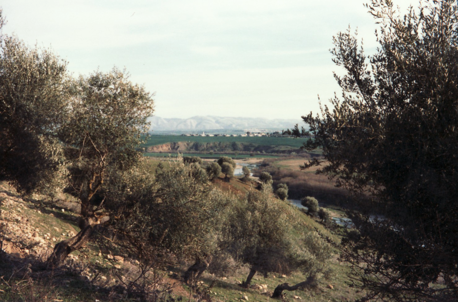 Guelma - Panorama of the Seybouse