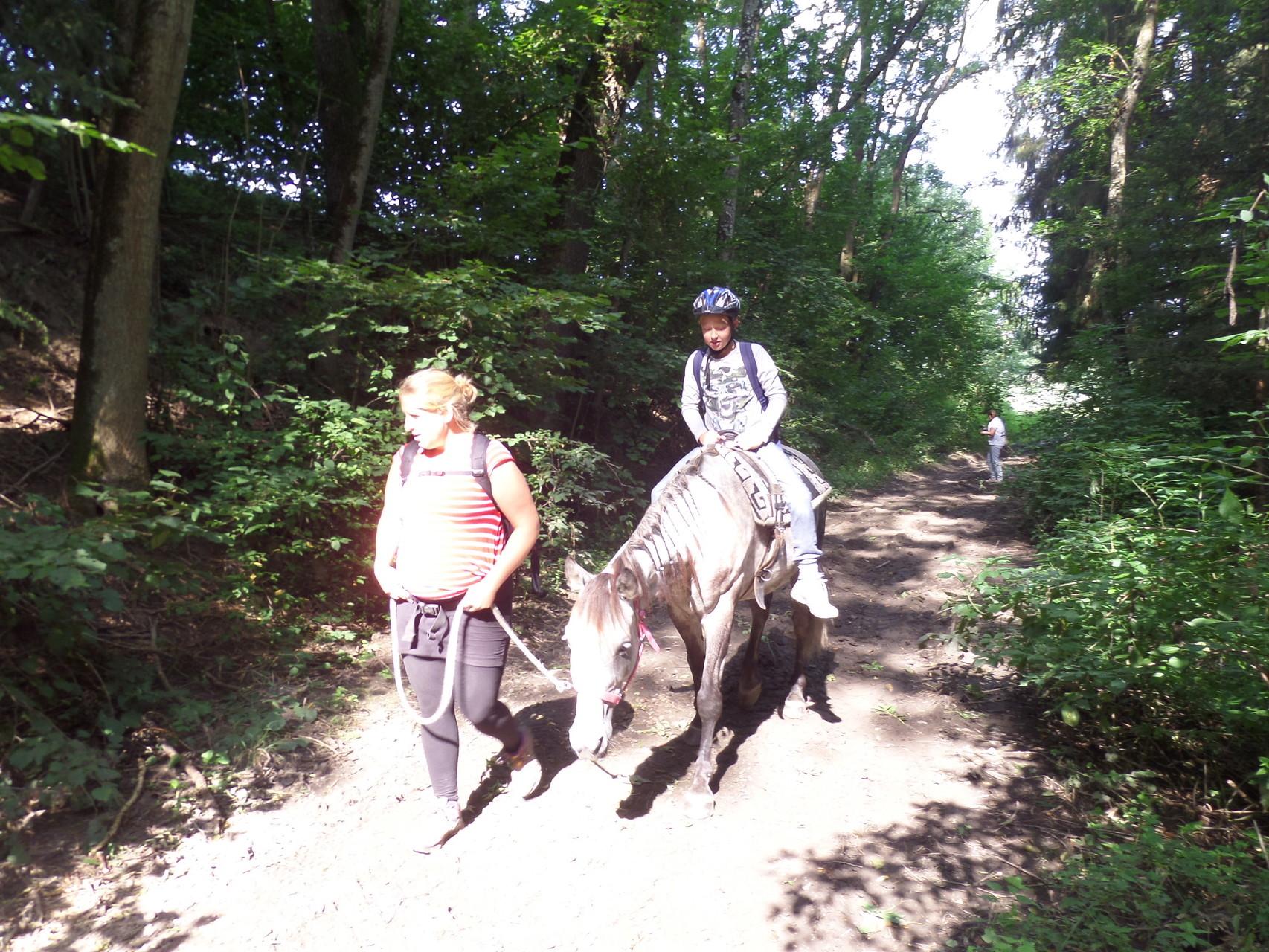 Das Glück der Erde am Rücken der Pferde