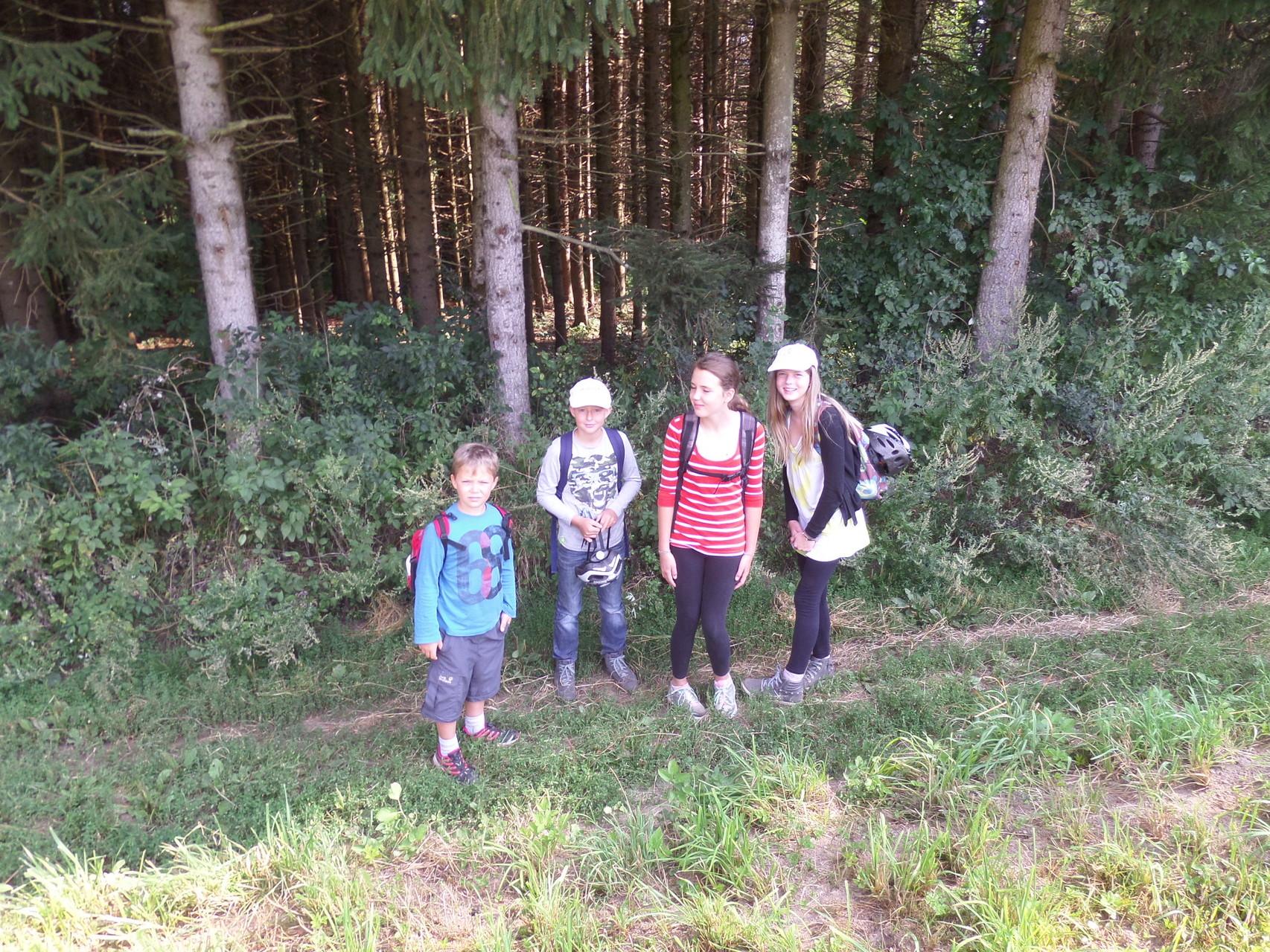 Klettern, hüpfen, springen, laufen: Bewegung macht Freude