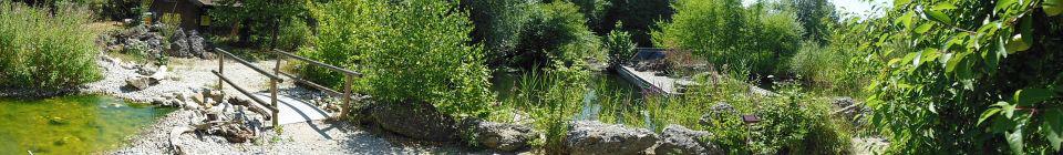 Umweltgarten Wiesmühl Unterwasserwelt LBV Inn-Salzach Ortsgruppe Engelsberg Natur Umwelt