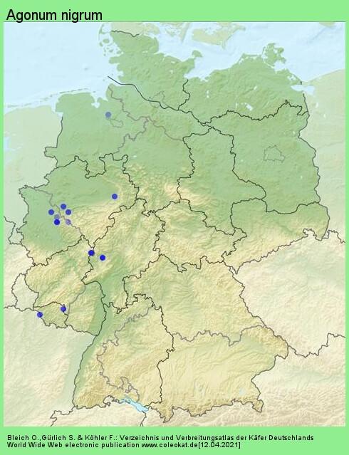 Verbreitungskarte aus Deutschland von Agonum nigrum Dejean, 1828