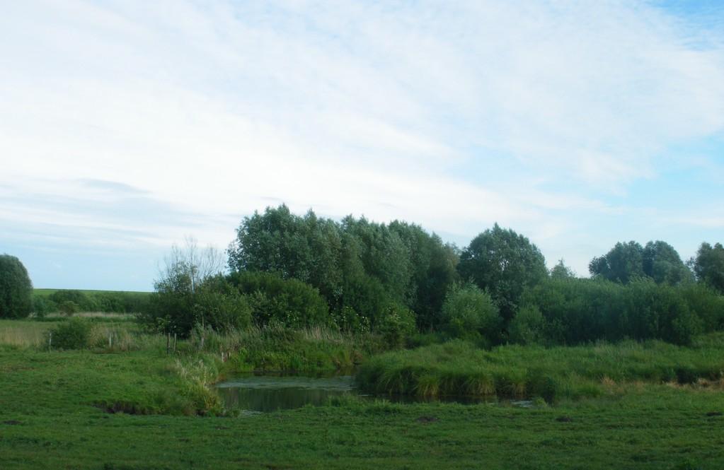 Le Marais de Bonnelle