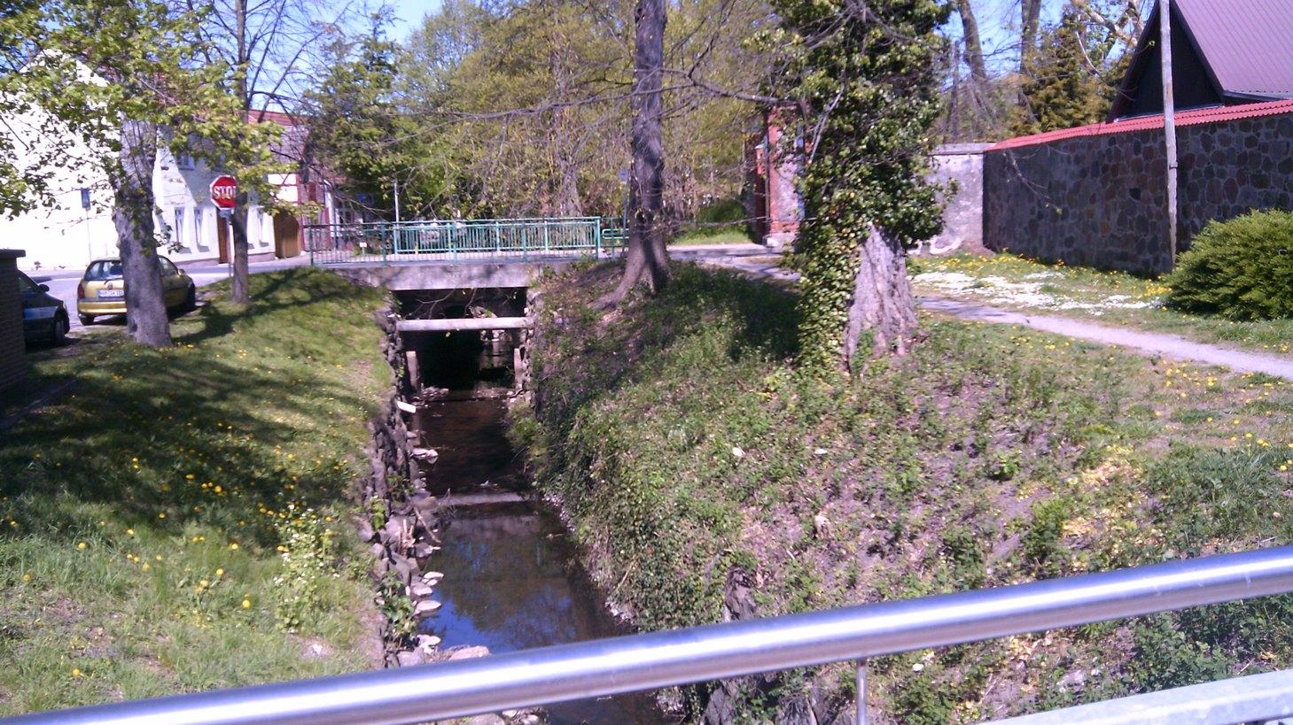 Stadtgraben Loitz Peene