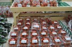 JAきみつ味楽囲さだもと店-トマト