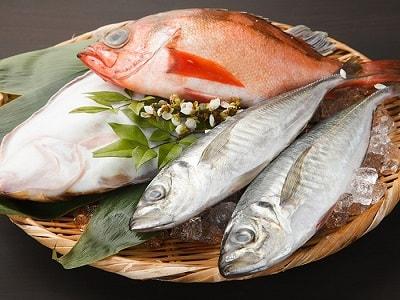 たかはし-鮮魚