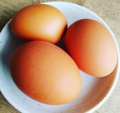 たまごらんど-卵