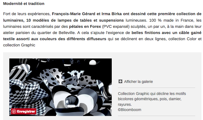 Bloomboom - Lampe Fleur, Flowerlamp, Suspension, made in France, artisanal, Paris, interieor design, décor, luminaires, maison.com, made in france, création François-Marie Gérard et Irma Birka, pop, podesign, noir&blanc, black&white,60ies
