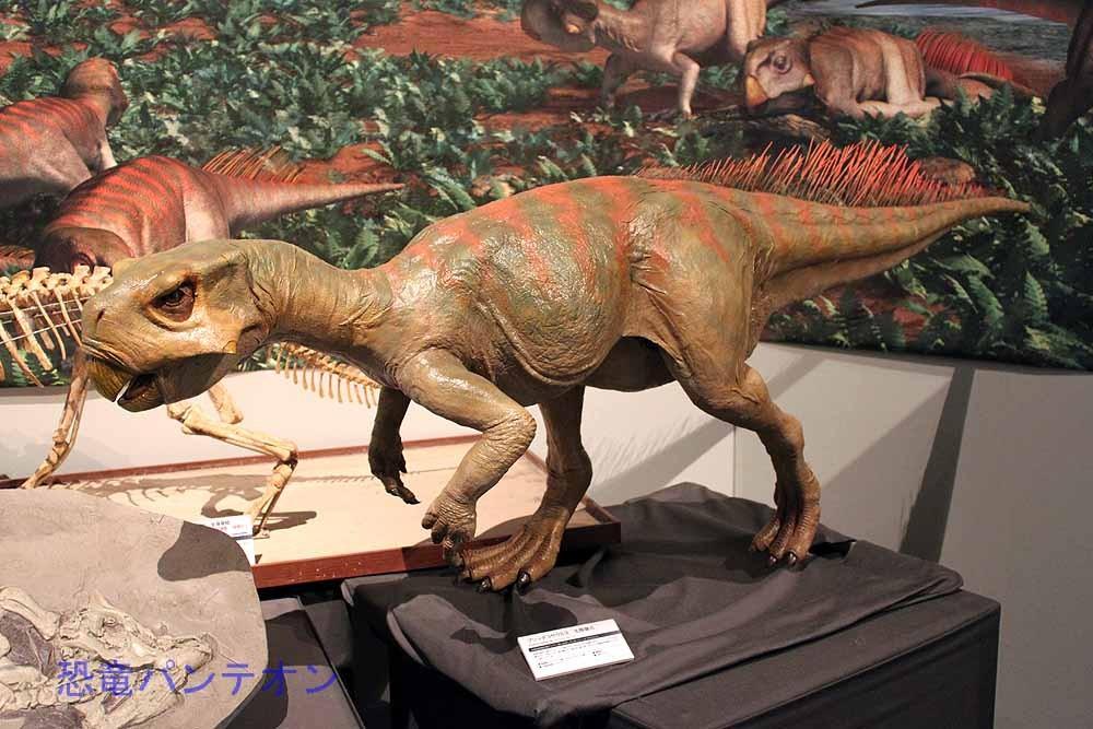 プシッタコサウルス生態復元