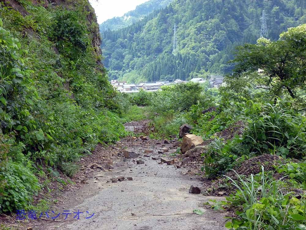 化石壁直下の地面には落石が・・・