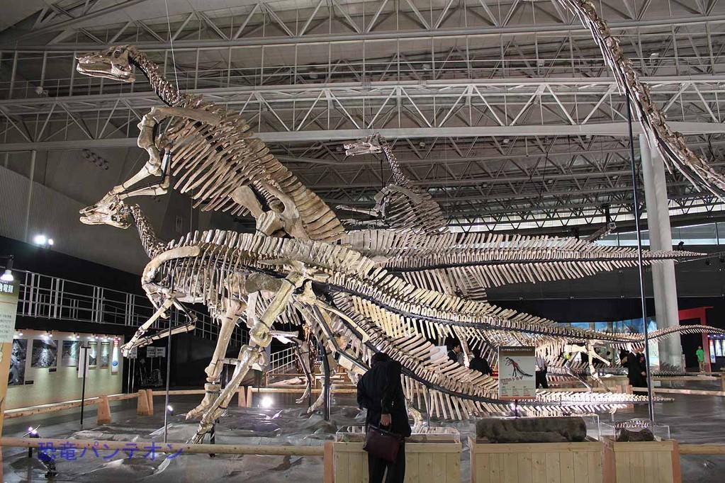 世界最大のハドロサウルス類、フアシアオサウルス(全長19m)をはじめとする恐竜群
