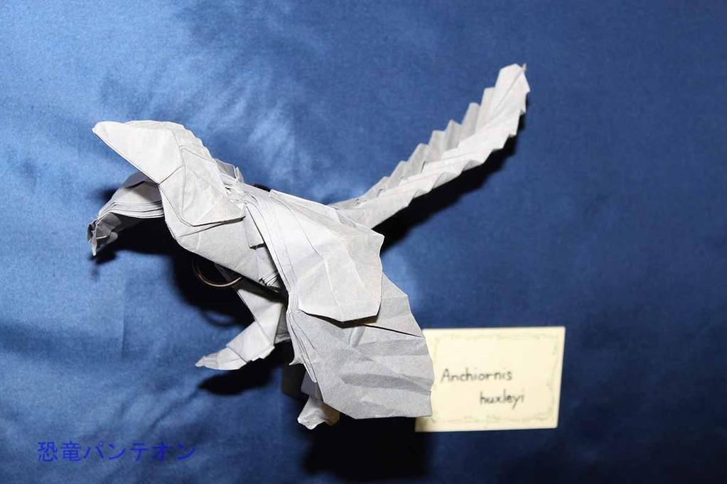 まつもとかずやさんの折り紙 アンキオルニス