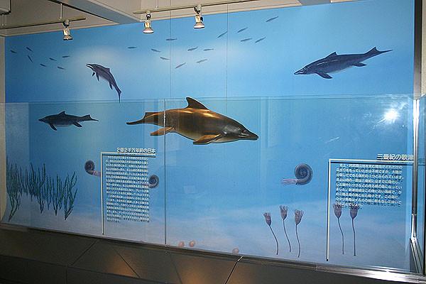 壁面には魚竜の遊泳