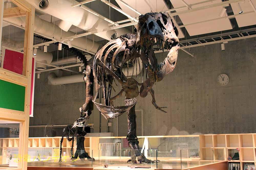 親子連れのティラノサウルス