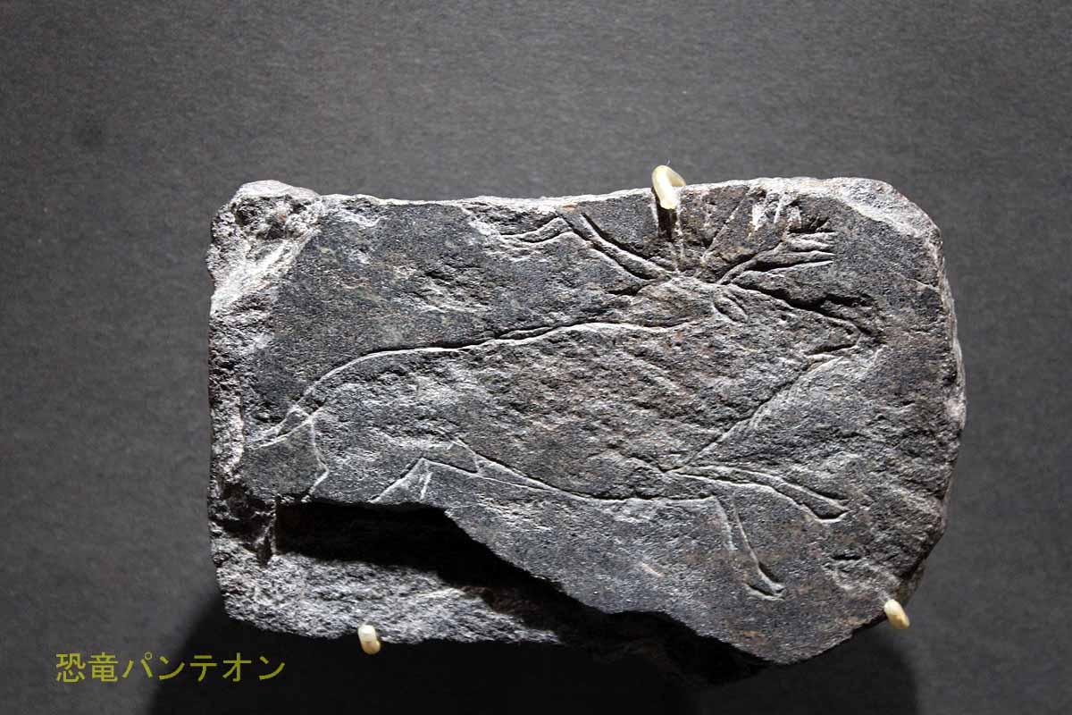 トナカイが刻まれた石版 フランス国立考古学博物館(サン=ジェルマン=アン=レー)所蔵