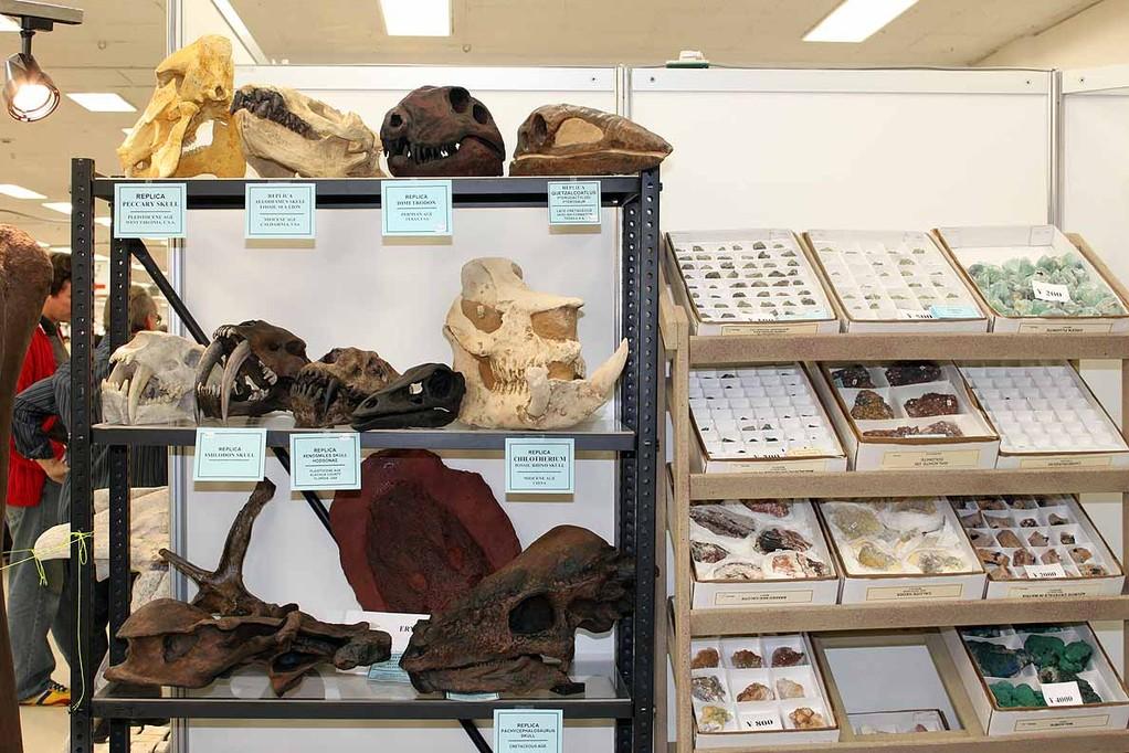 恐竜も哺乳類もディメトロドンもケツアルコアトルスも