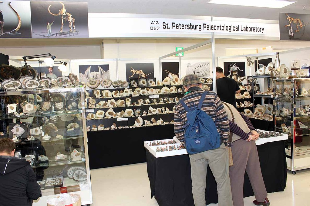 St. Petersburg Paleontological Laboratory ロシアの三葉虫やアンモナイトなどのブースです。