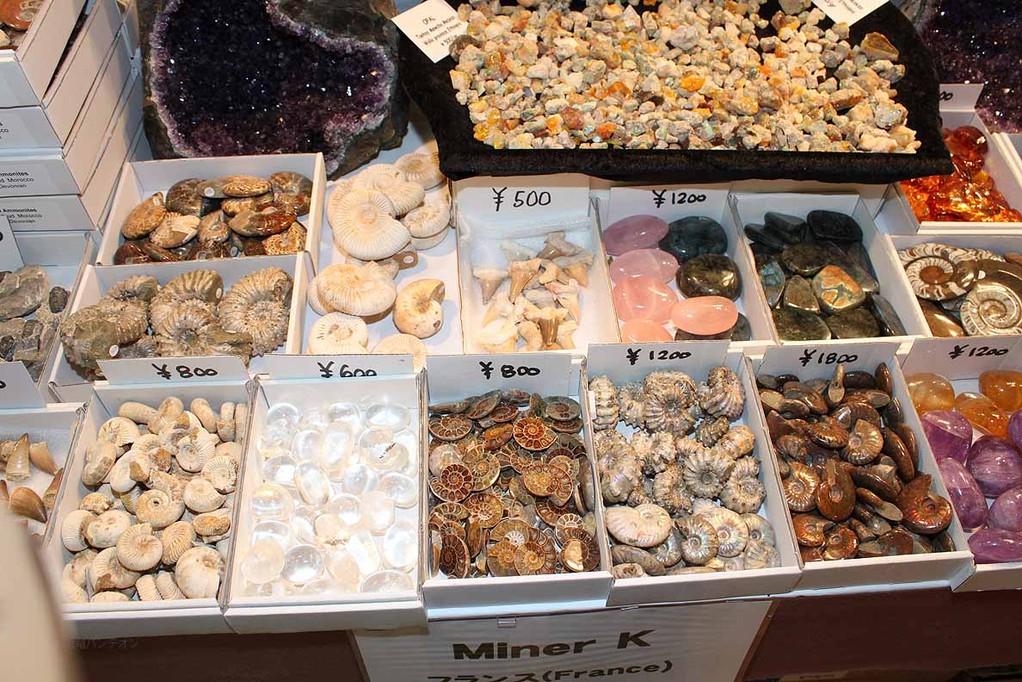 MinerK フランス(40,39) サメ、アンモナイト、輝石など1箱3000円~、バラでは400円~ぐらい