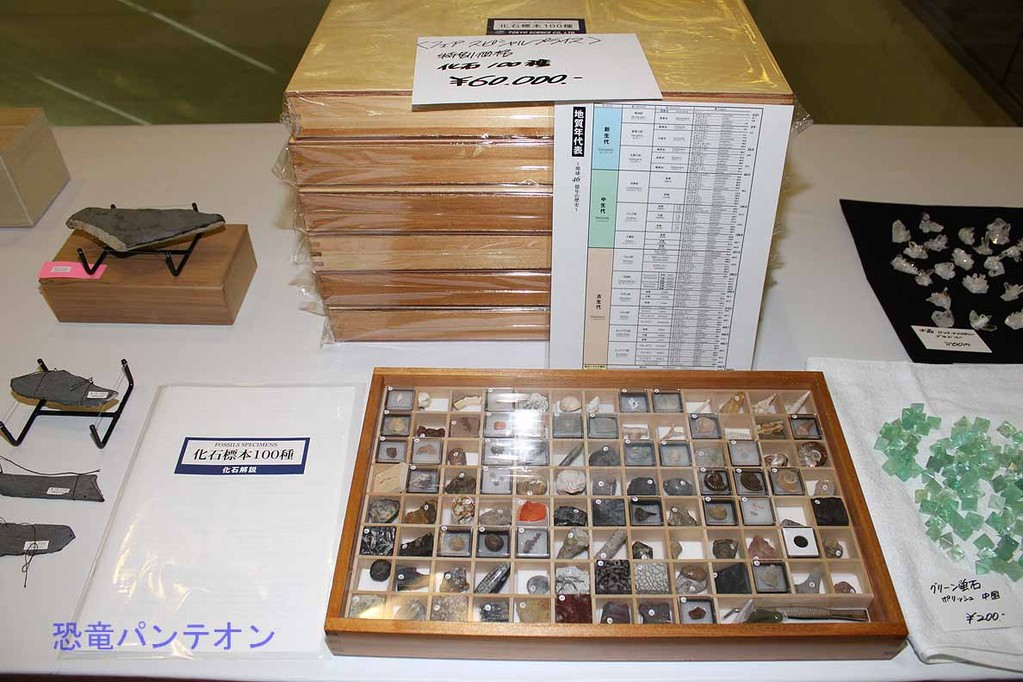 第二会場 化石標本100種セット 6万円