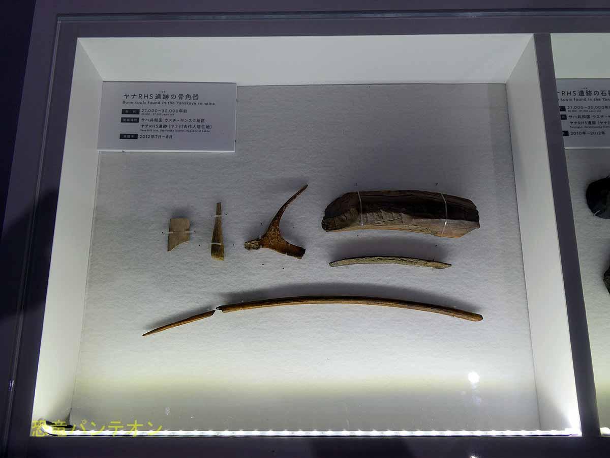 マンモスと人類のかかわり から発掘された石器、角製の銛など